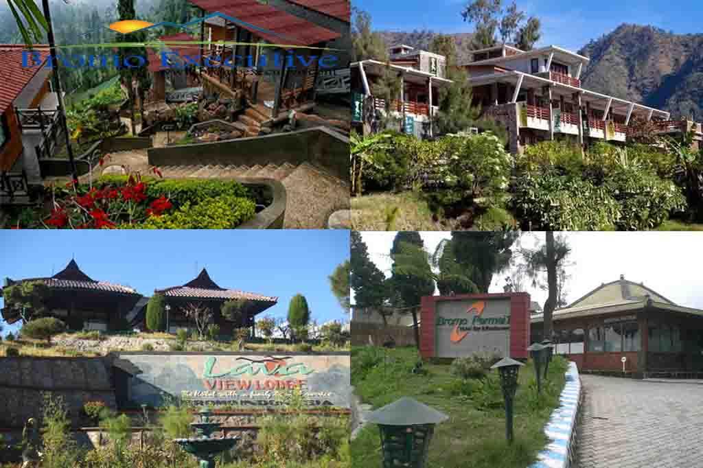 Hotel di Bromo Murah sampai Berbintang