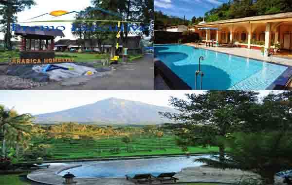 Hotel di dekat Kawah Ijen