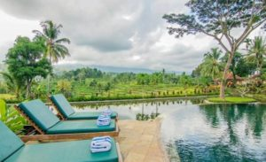 Hotel Ijen Resort and Villas